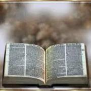 MVB Movimento Viva a Bíblia