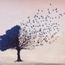 árvore-se-desfazendo.png